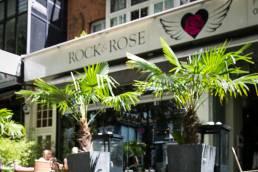 Rock & Rose exterior